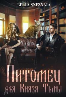 """Книга. """"Питомец для Князя Тьмы, или Все любят котиков """" читать онлайн"""